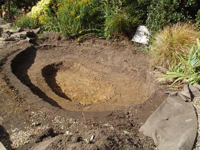 Building A Concrete Pond