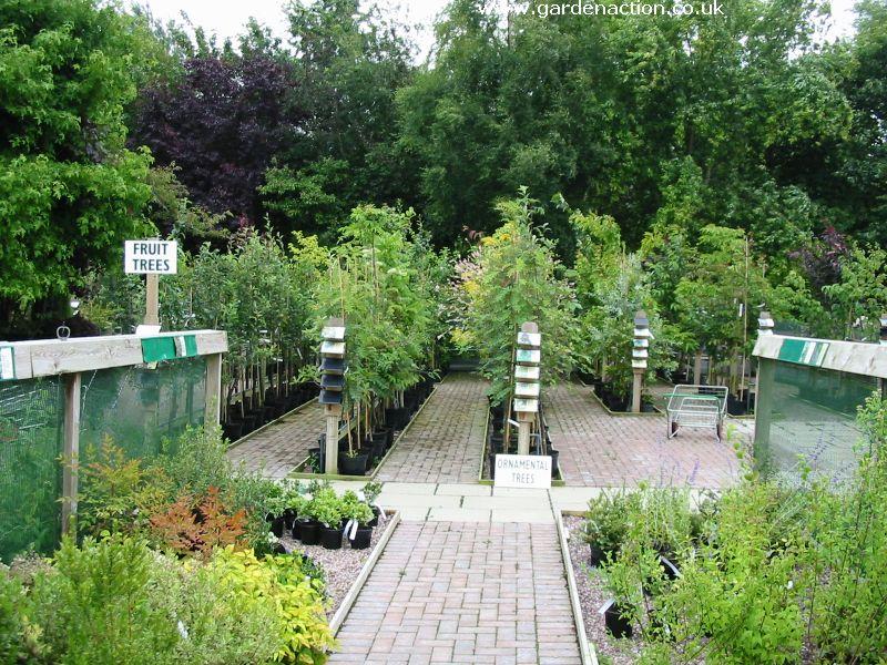 Garden Centre: A Review Of Brackenwood Plant And Garden Centre, Bristol