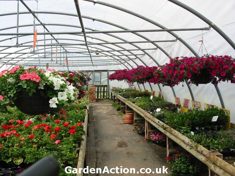 Chestnut Nurseries garden centres in Coventry