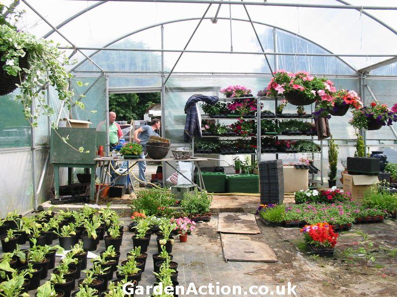 Garden Centre: Chestnut Nurseries, Garden Centres In Coventry
