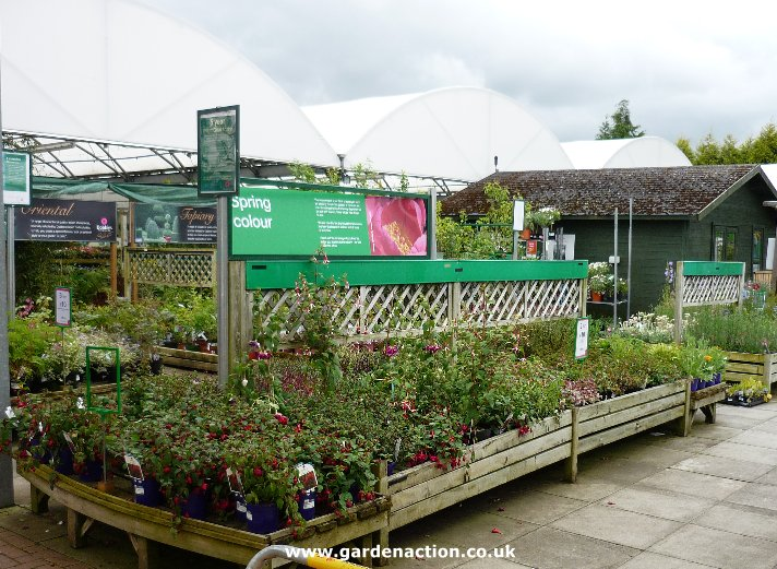 Dobbies garden centre birtley durham for Garden centre