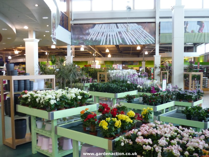 We Review The Cafe At Dobbies Dundee
