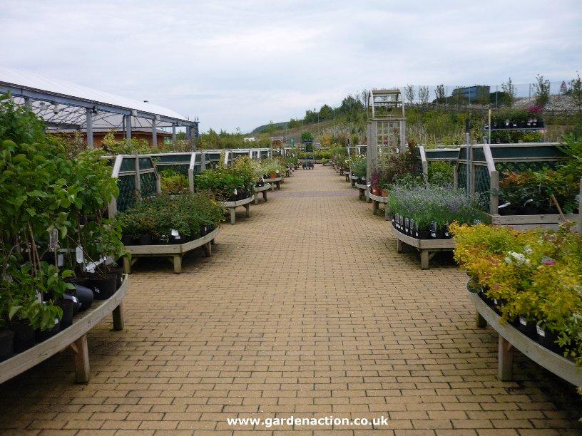 Garden Centre: Dobbies Garden Centre At Dunfermline