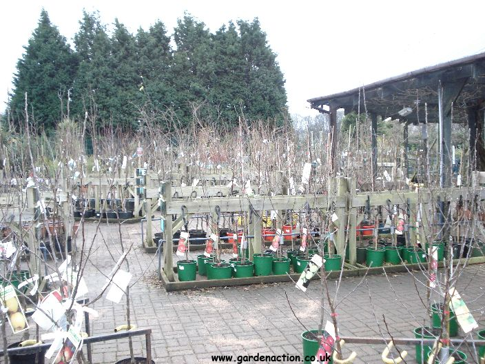 Garden Centre: We Visit And Review Dobbies Garden Centre, Edinburgh