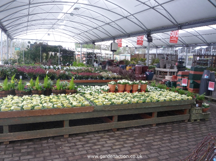 Dobbies garden centre reading for Garden centre
