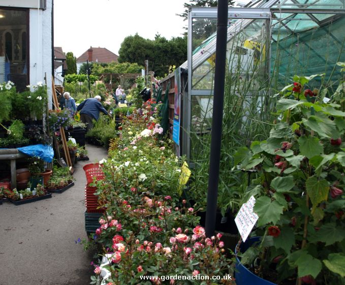 A review of the Henleaze Garden Shop near Bristol