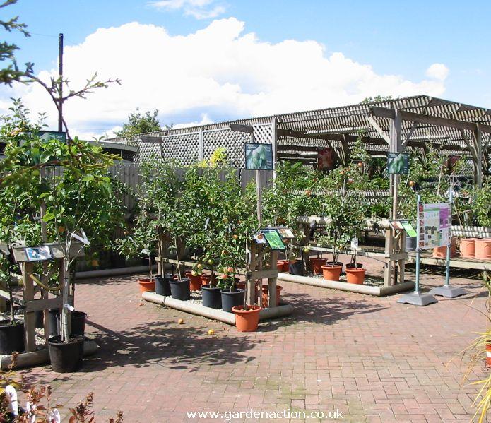 Garden Centre Chester Road Birmingham Garden Ftempo