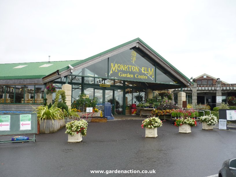 Monkton elm garden centre for Garden centre