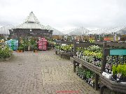 Rivendell garden Centre - the outdoor plants area.
