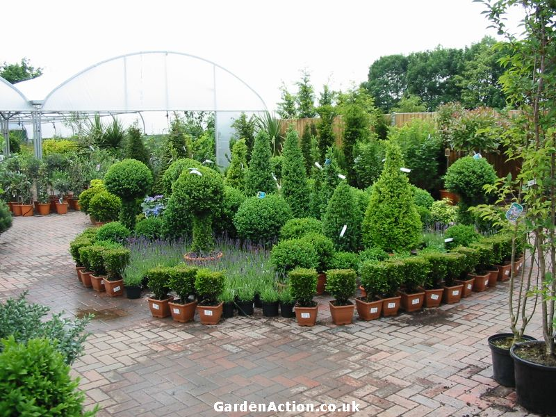 The layout of the plant area is very attractive click on the picture