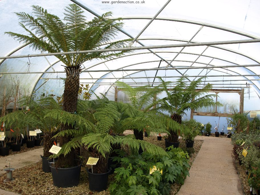A Review Of The Staunton Garden Centre Gloucestershire