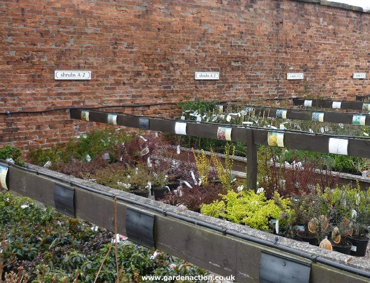 Garden Centre: Wentworth Garden Centre, Yorkshire