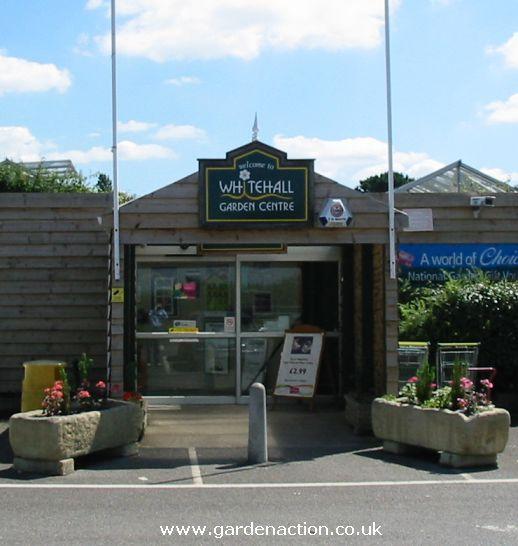Garden Centre: Whitehall Garden Centre In Bristol