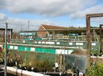 Plant sales area at Worlds End garden centre, Aylesbury