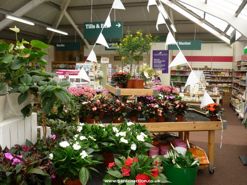 Wyevale garden centre in beaconsfield reviewed for Garden centre