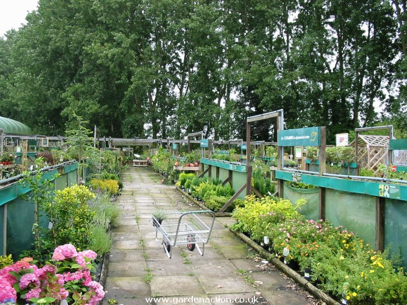 Wyevale keynsham garden centre in bristol for Garden centre