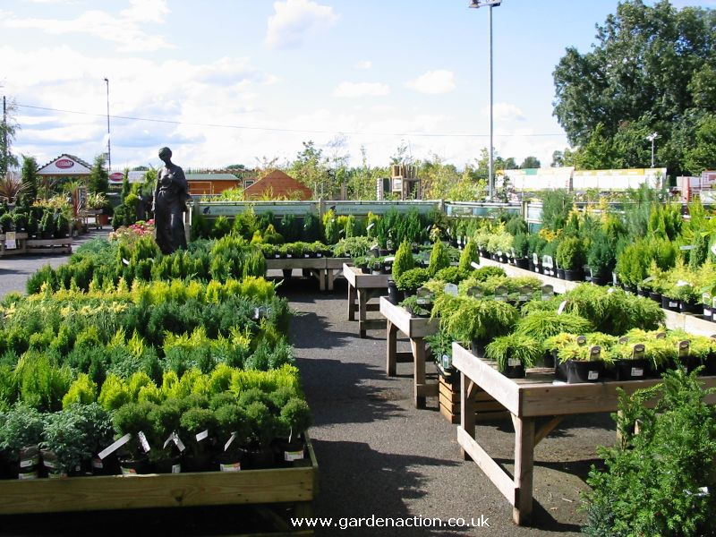 Wyevale garden centre stratford upon avon for Garden centre