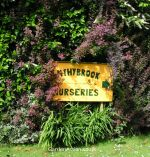 Entrance to Wythybrook Nurseries