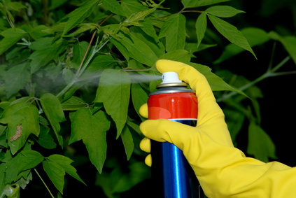 A Beginners Guide to Herbicides